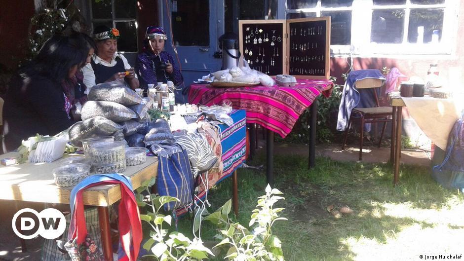 El Ciudadano   A Küme Mogen, el Banco Mapuche