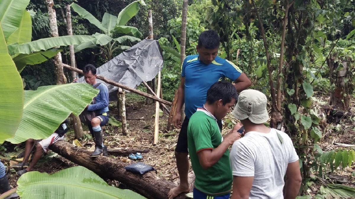 Indígenas de Perú utilizan herramientas tecnológicas para reducir la tala ilegal en la Amazonía