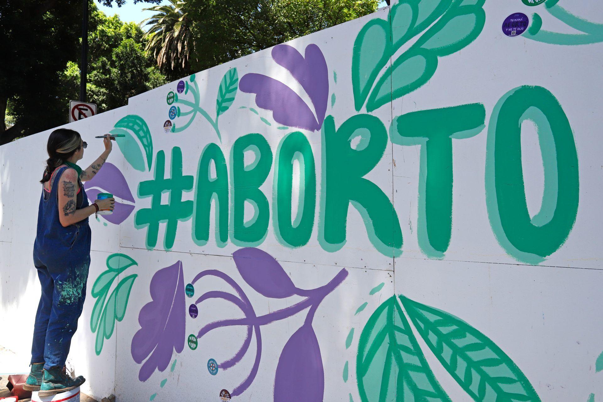 Continúa debate de proyecto que despenaliza el aborto sin causales dentro de las primeras 14 semanas de gestación