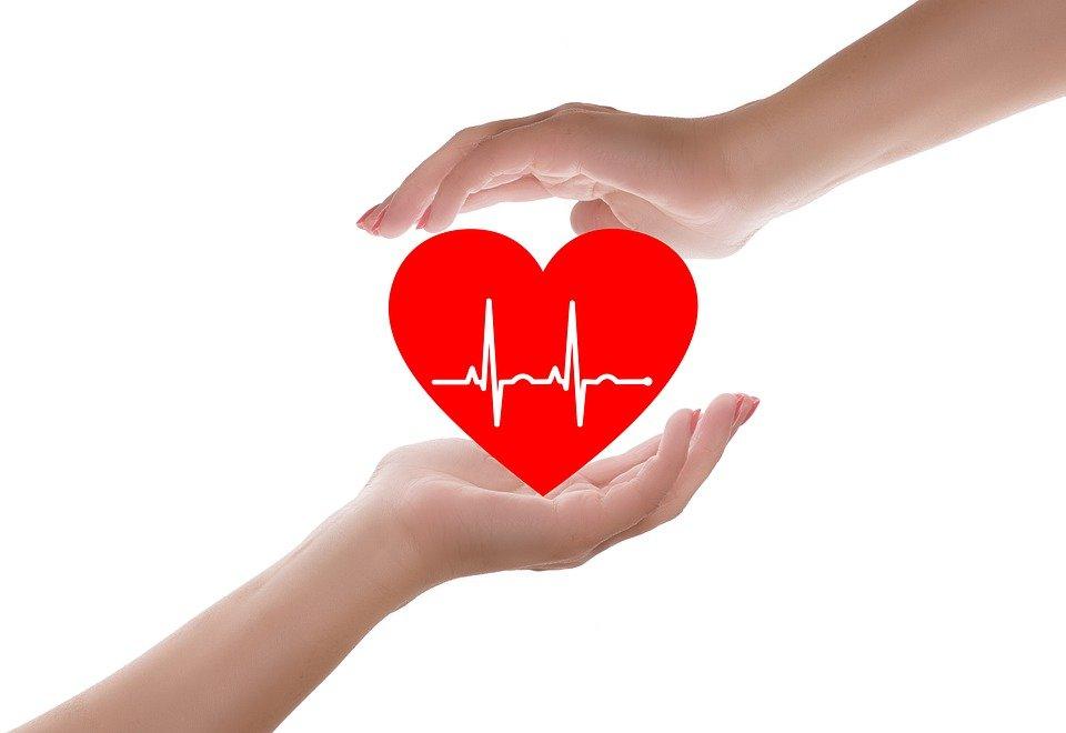 araña corazón ataques cardíacos