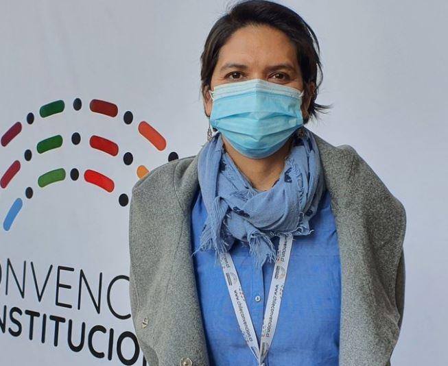 Doctora Cristina Dorador resume trabajo de la Convención en sus tres primeras semanas de sesiones