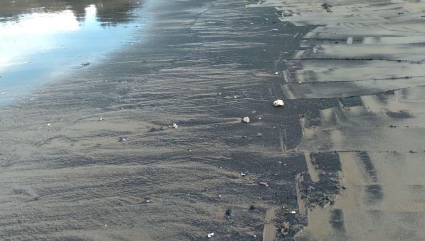 Alerta en Quintero ante continuos varamientos de carbón: Se han registrado 63 durante este año