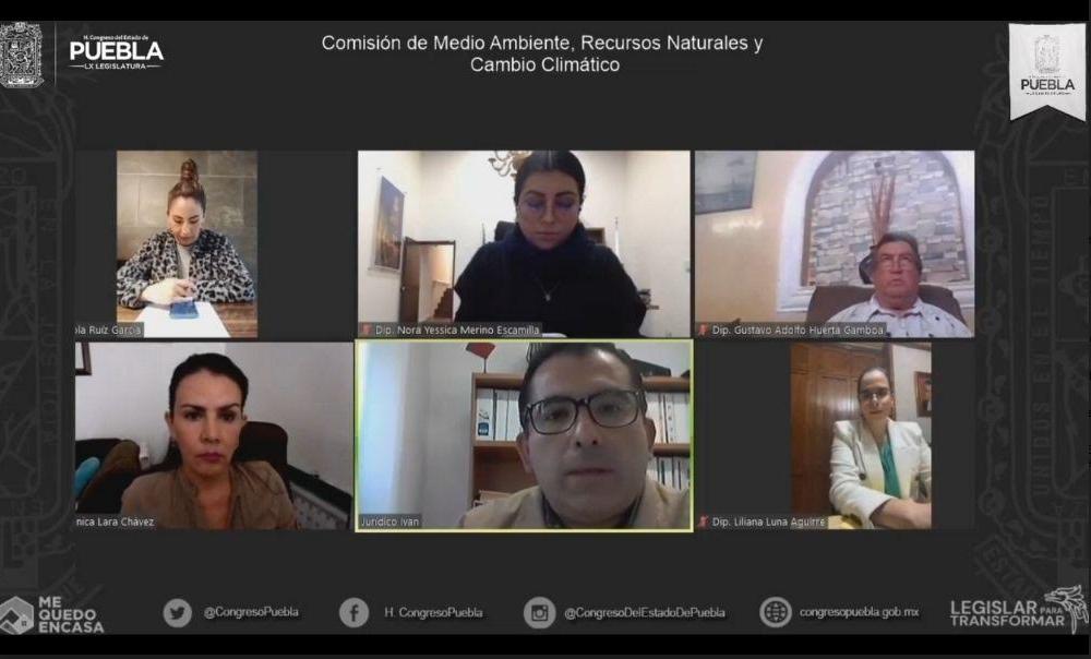 Diputados locales van contra el maltrato animal en el estado de Puebla