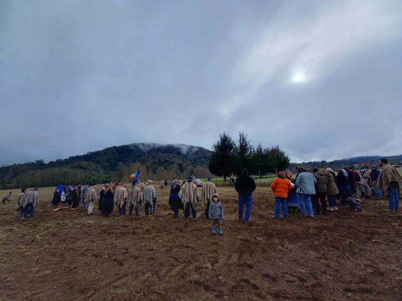 Comunidad mapuche Lof Niguen tras retiro de proyectos fotovoltaicos de su territorio: Es un logro nuestro y de todos los lof mapu que se movilizan