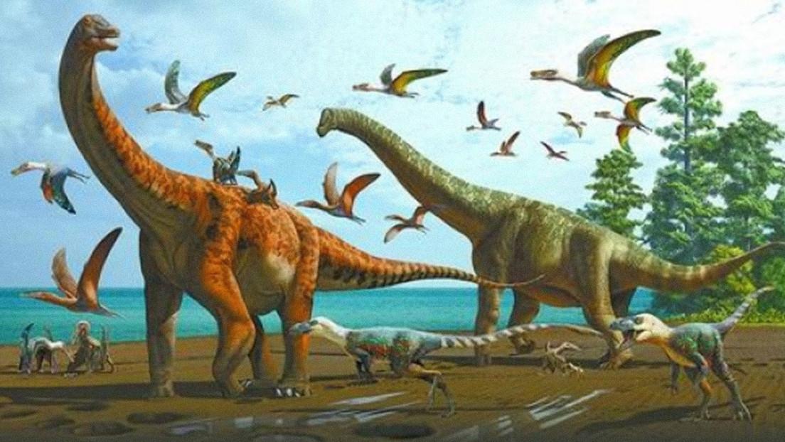 Descubren dos nuevas especies de dinosaurio en China