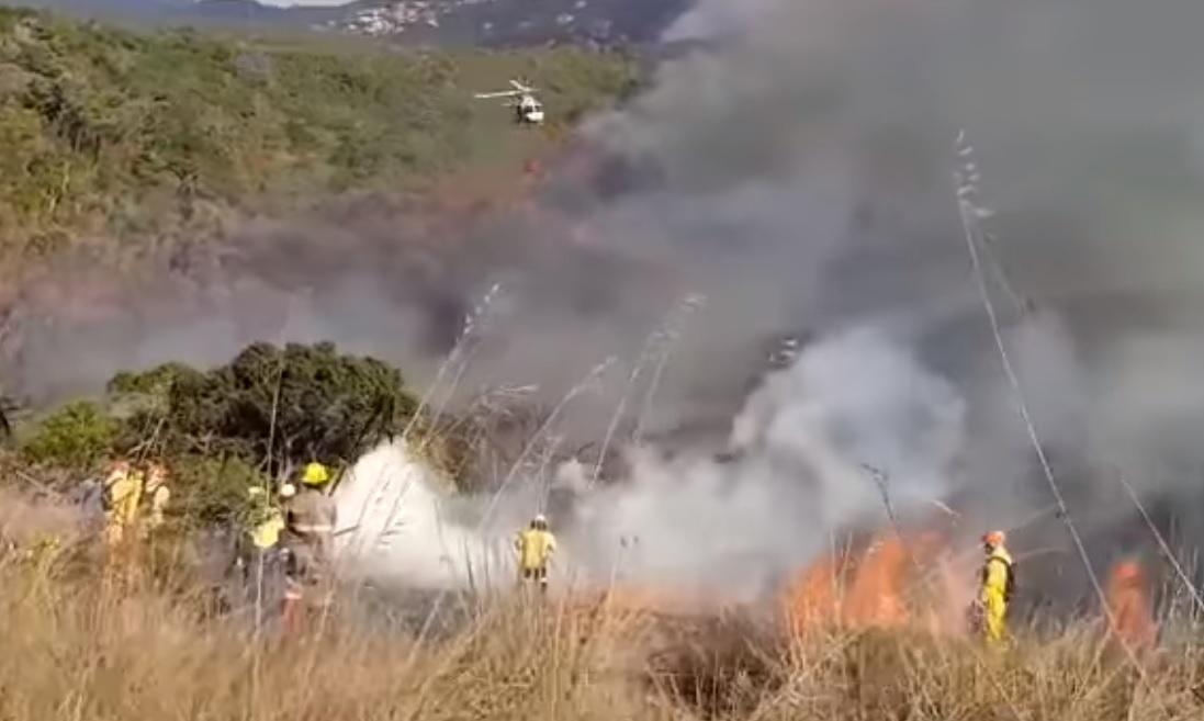 Incendio consume más de la mitad de reserva forestal del parque Juquery de Brasil