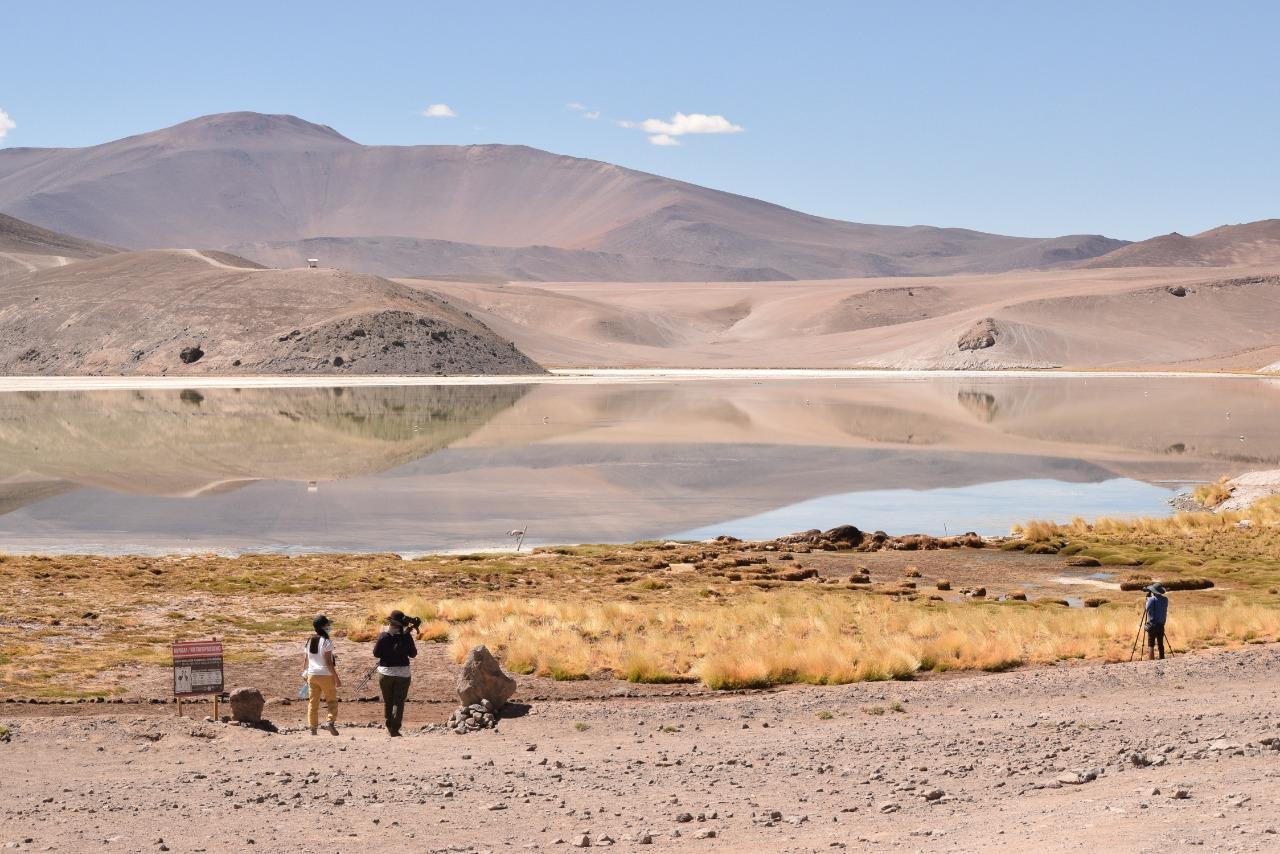 Se viene el estreno del documental «Maricunga: ecosistema amenazado por la minería del litio»