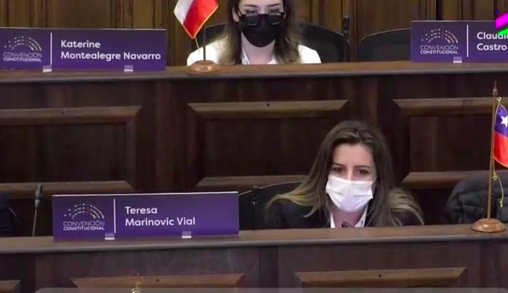 Convención Constitucional: Denuncian a cuatro delegados de Chile Vamos por racistas