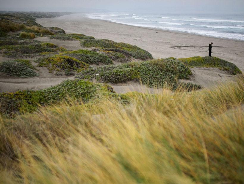 Insólito: Agencia de «ecoturismo» ofrece clases de conducción 4×4 en las dunas de Ritoque