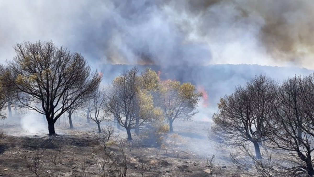 Se eleva a seis la cifra de muertos por incendios en costa mediterránea de Turquía