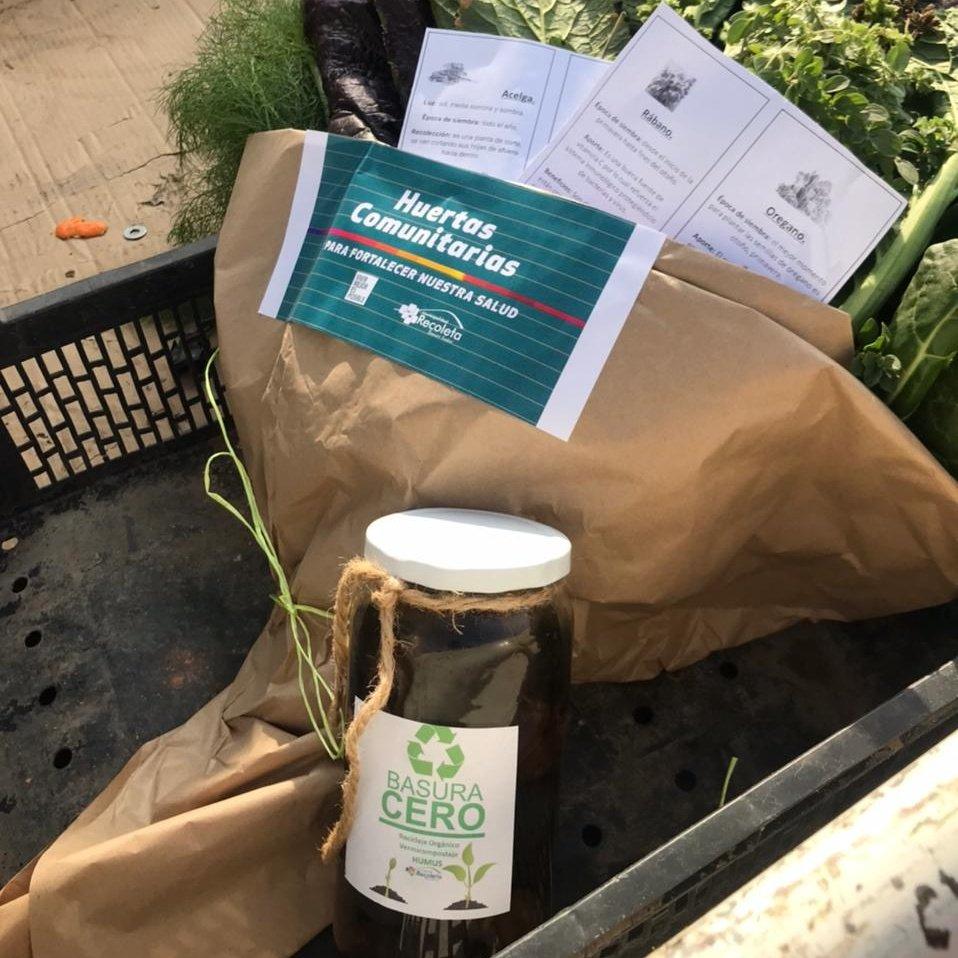 Viventerio Comunitario de Recoleta entregó su primera cosecha a las ollas comunes del territorio