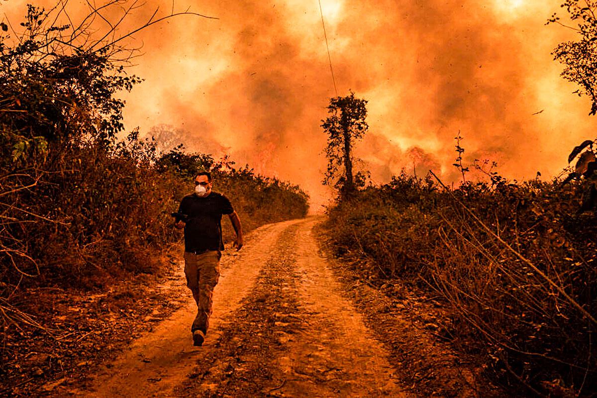 Dos ciudades del tamaño de Río de Janeiro: Más de 261.000 hectáreas quemadas en el Pantanal brasileño
