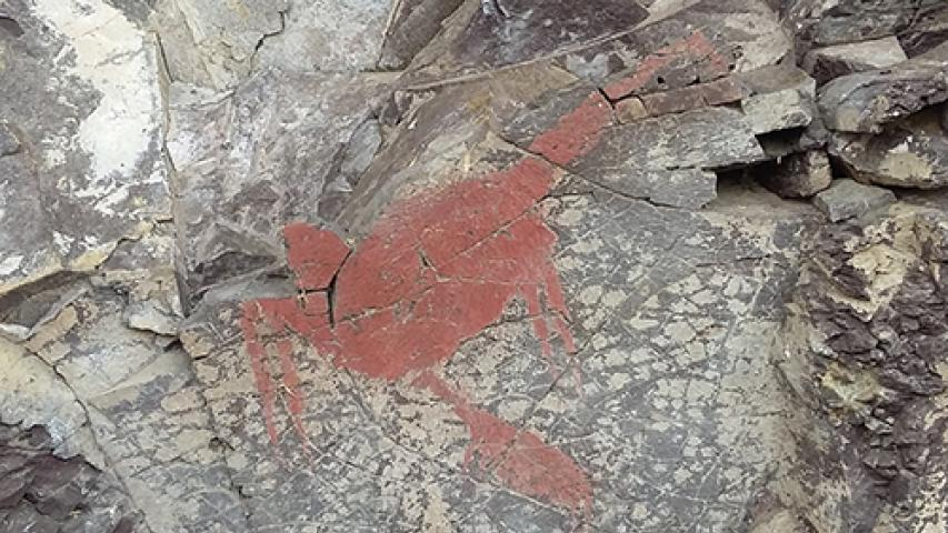 Catastro de arte rupestre en Aysén determinó 120 sitios con más de 1750 motivos