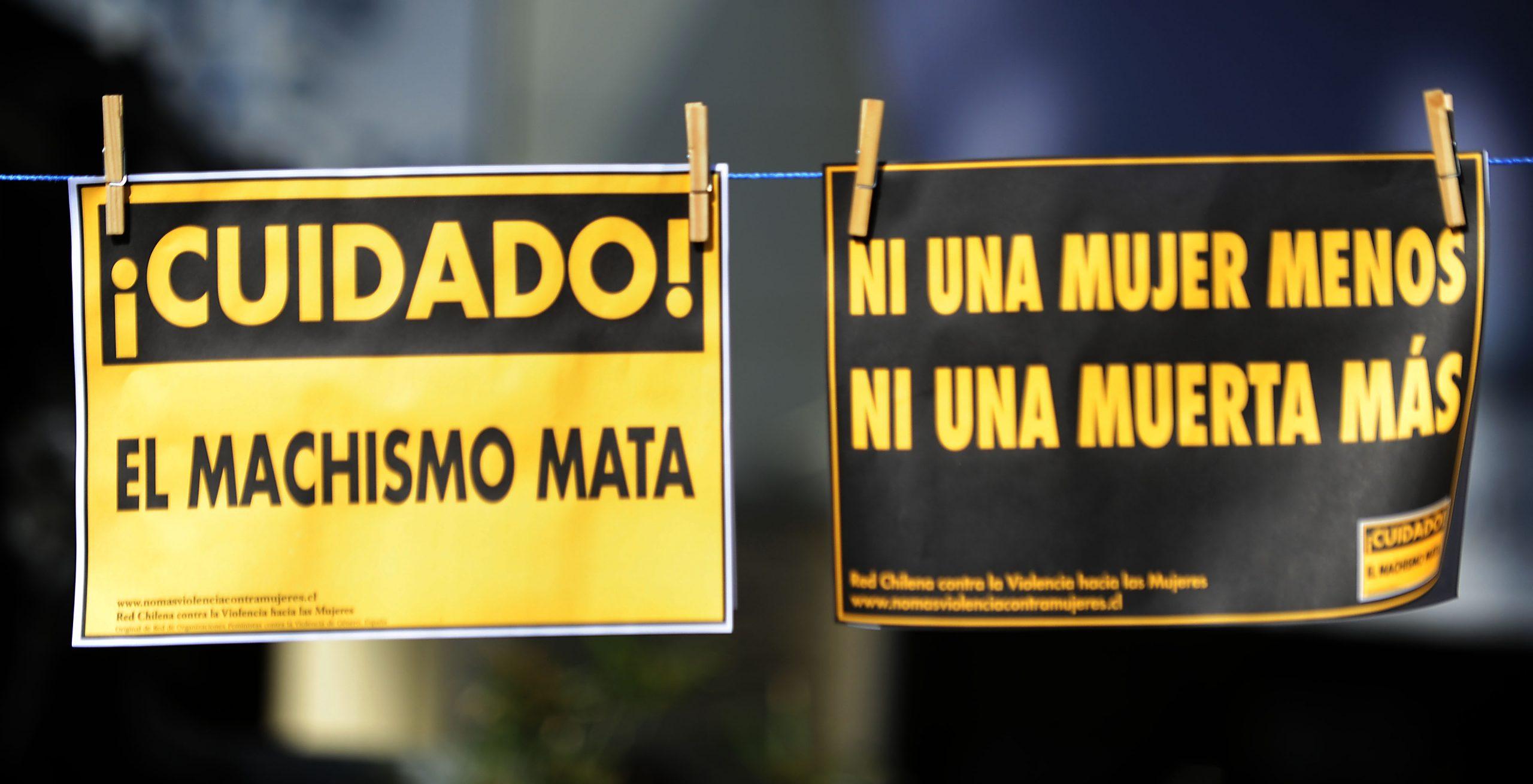 Red Chilena presentó dossier informativo 2020-2021: Violencia contra mujeres recrudeció durante la pandemia