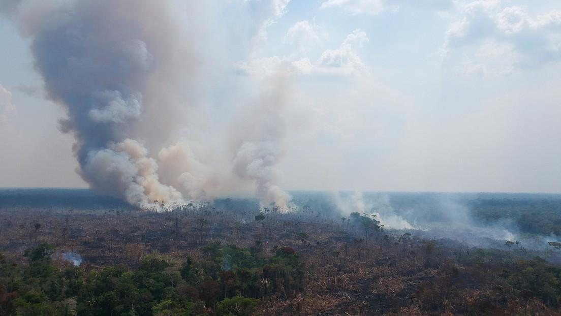 Brasil podría «ser excluido del nuevo orden económico-climático» por no llevar planificación estratégica para el crecimiento sostenible