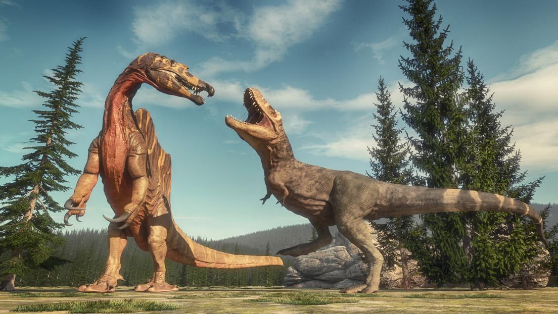Las erupciones volcánicas masivas de hace 230 millones de años habrían desencadenado «megamonzones» que dieron paso al dominio de los dinosaurios