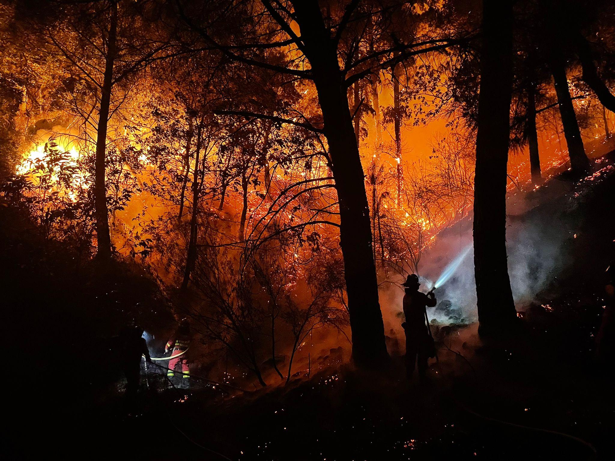 Mayor peligro y virulencia: incendios de sexta generación