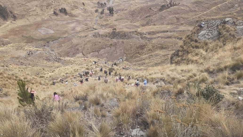 Al menos 21 muertos dejó un accidente de autobús en Bolivia