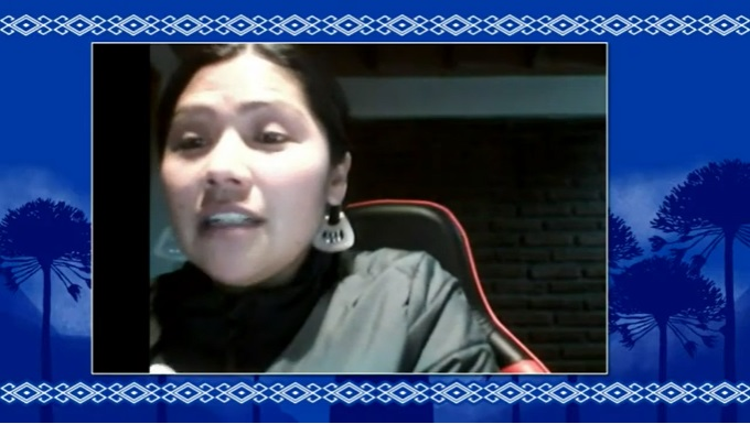 Informativo sobre el proceso constituyente con la convencional Mapuche Natividad Llanquileo