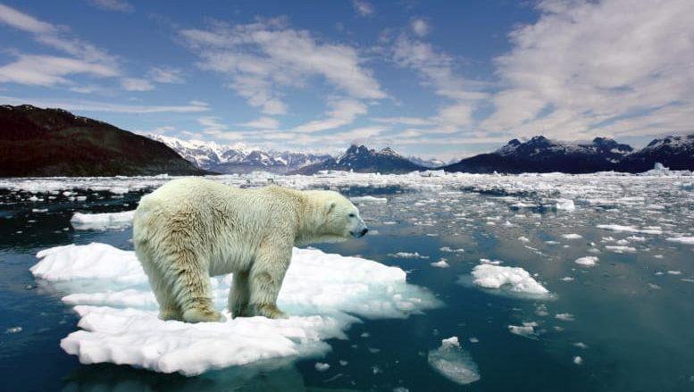 """ONU advierte que el mundo está en situación de """"código rojo"""" por el calentamiento global"""
