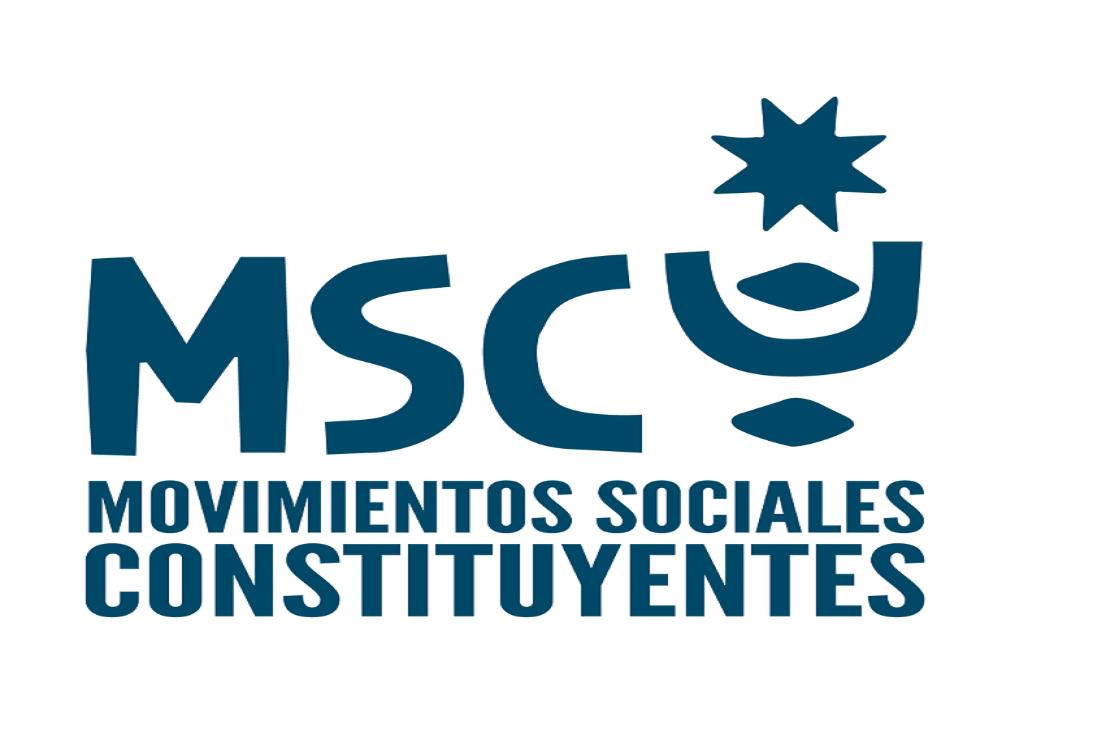 Convencionales de Movimientos Sociales Constituyentes se refieren a situación de Rodrigo Rojas Vade