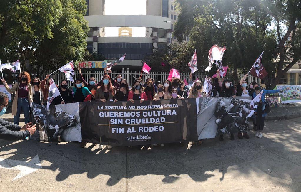 Presentan proyecto de ley para que municipios puedan frenar el rodeo