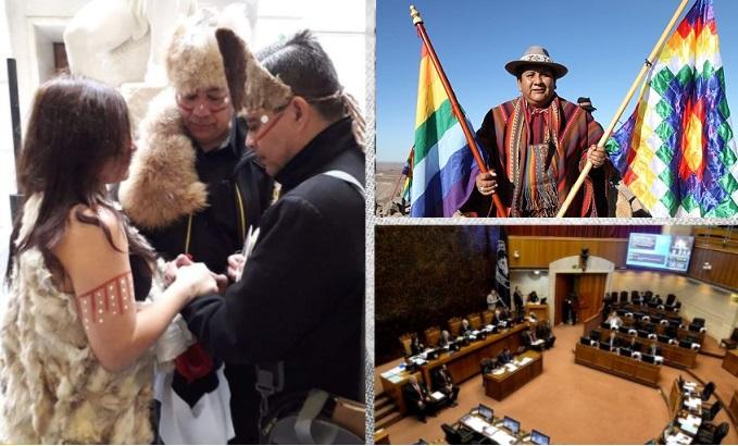 Solidaridad entre pueblos y Naciones originarias: Satisfacción por avances para el reconocimiento del Pueblo Selk´nam