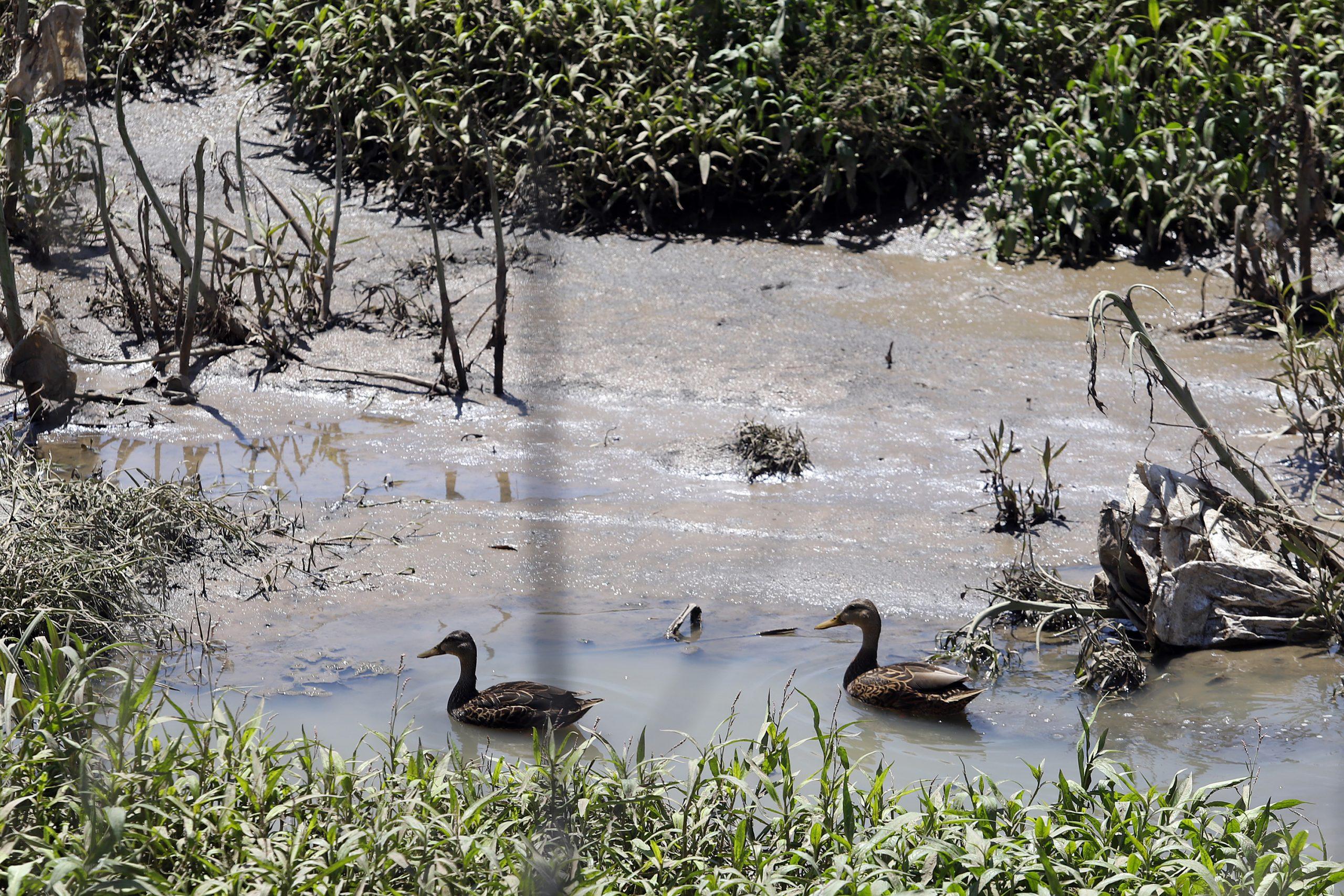 Una simulación foro para sanear río Atoyac, recomendado por CNDH: Centro Fray Julián Garcés