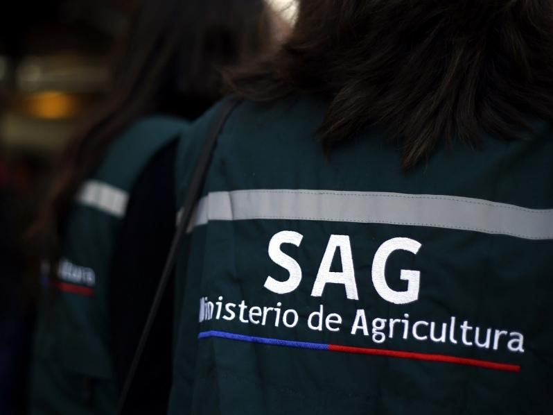 Nueva investigación acusa falta de fiscalización eficaz por parte del SAG