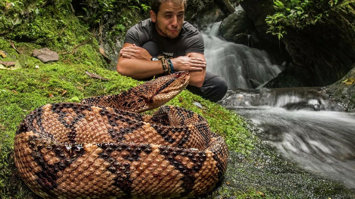 Biólogo Jaime Culebras: «Si mi trabajo no tiene una labor de conservación, no tiene sentido para mí. Los anfibios son los vertebrados más amenazados del planeta»