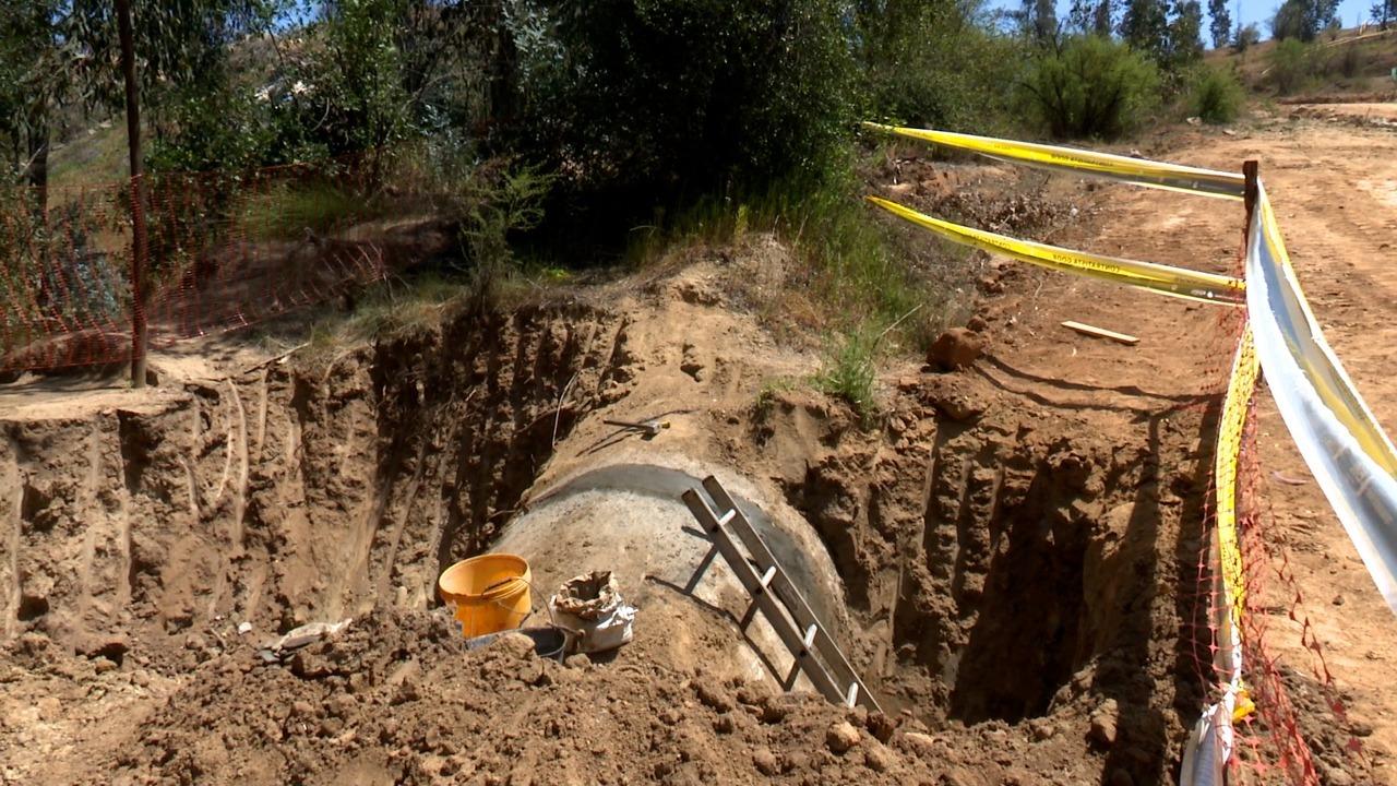 Denuncian que empresa subcontratista de Esval arrasó con bosque nativo en el Parque La Reserva de Villa Alemana