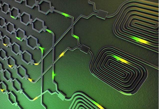 Investigadores del DFI-MIRO lideran investigación sobre el uso de la luz en tecnologías cuánticas
