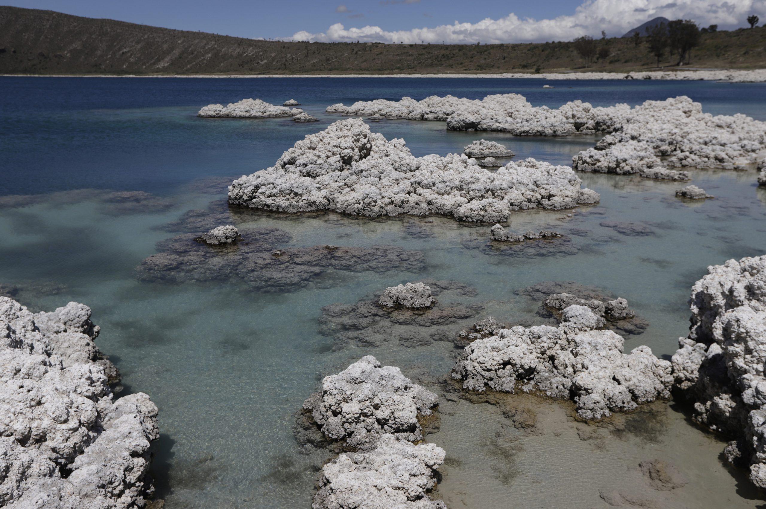 Pedirá gobierno local investigación sobre obra en laguna de Alchichica