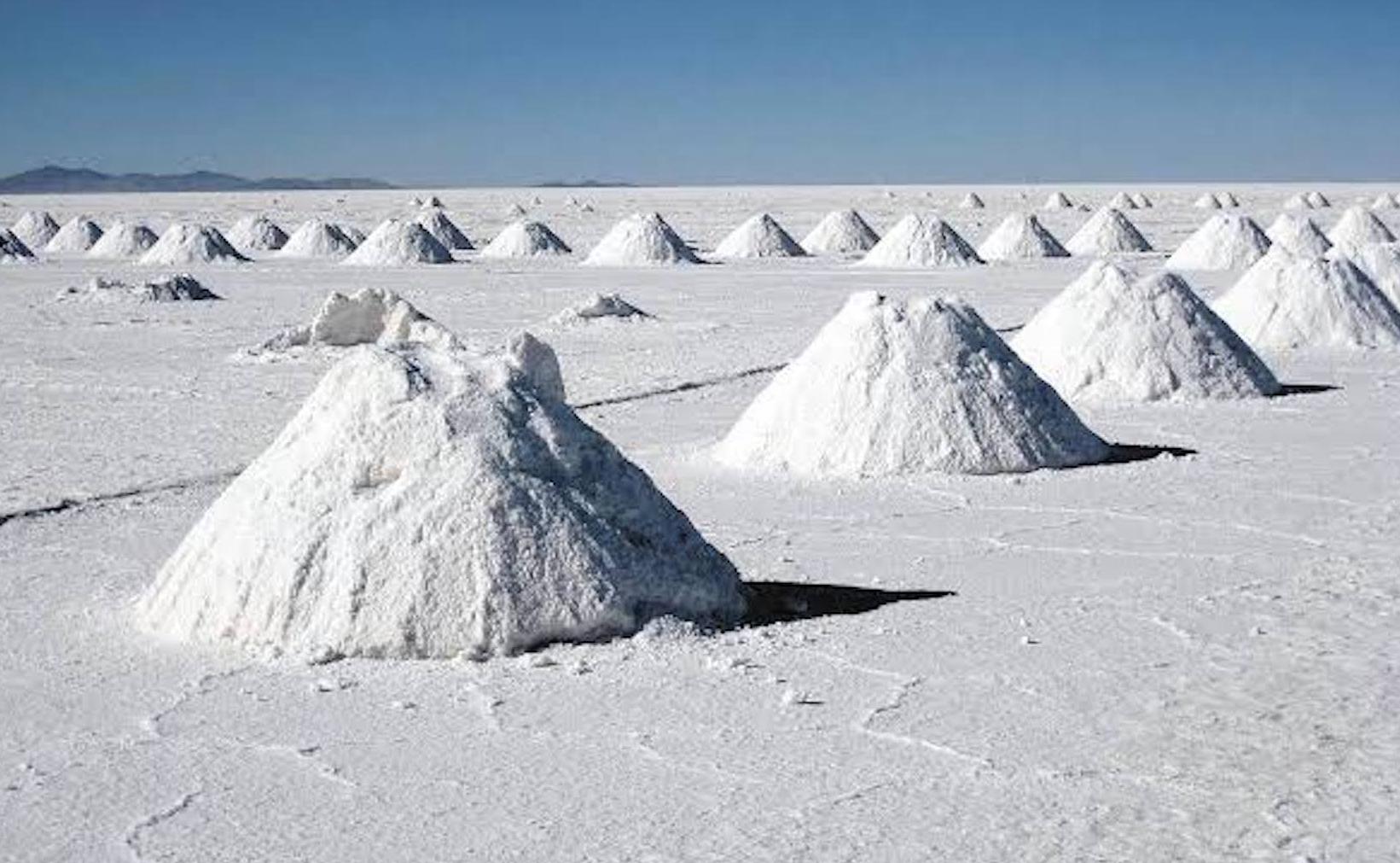 Alemanes, interesados en inversión de litio mexicano