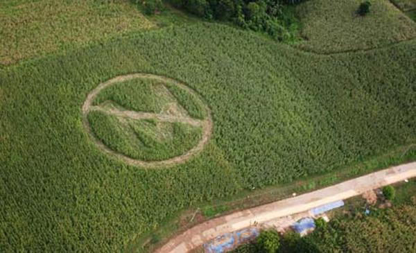 Monsanto se va de Colombia
